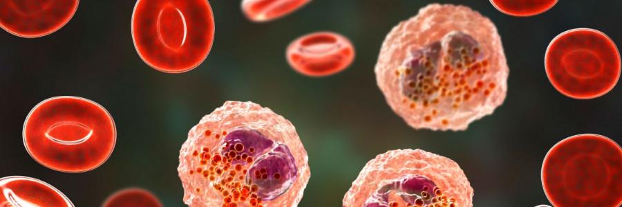 ¿Qué es el lupus? Enfermedad por la que falleció la esposa de Beltrones