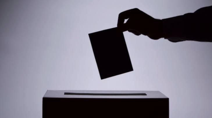 Instituto Estatal Electoral