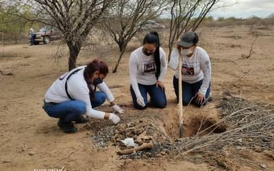 Madres Buscadoras de Sonora: a dos años del inicio del peregrinar