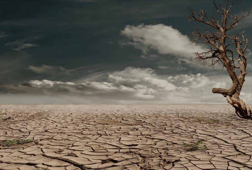Los estragos de la sequía en Sonora