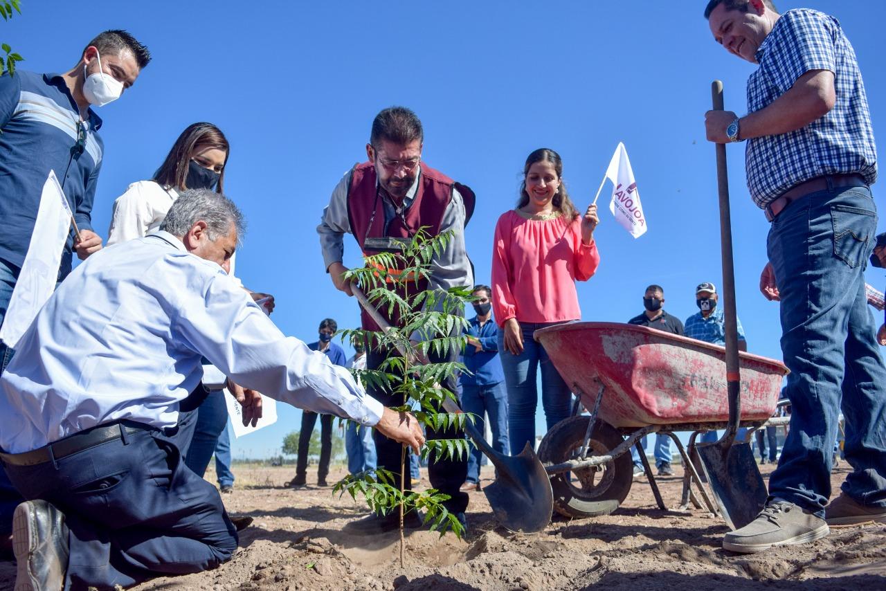 """Inicia Programa de Reforestación en Unidad Deportiva """"Faustino Félix Serna""""."""
